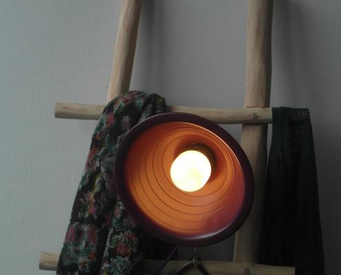 Naast een lamp of kleding kan je bijvoorbeeld ook plantjes bevestigen aan de ladder