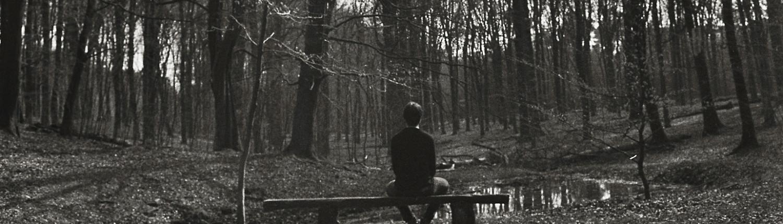 Zwart wit foto genomen op de Veluwe met een analoge spiegelreflexcamera