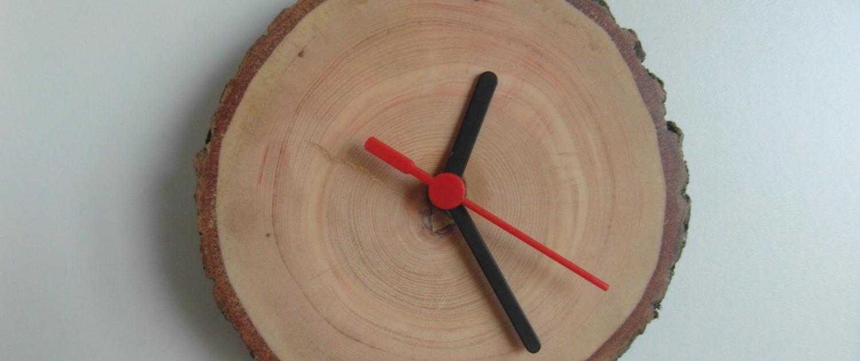 En klok van een doorsnede van een zij-arm van een oude es