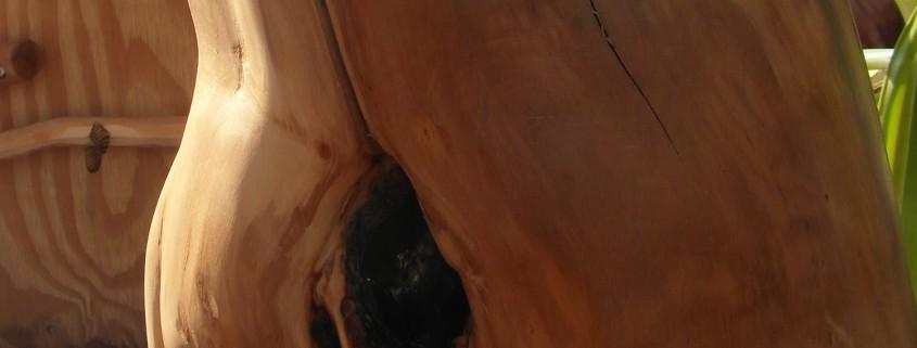 Omdat het hout nog steeds aan het drogen is, ontstaat er een prachtige scheur in het hout